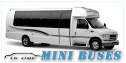 Albuquerque Mini Bus rental